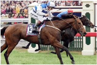 Ethereal Winner 2001